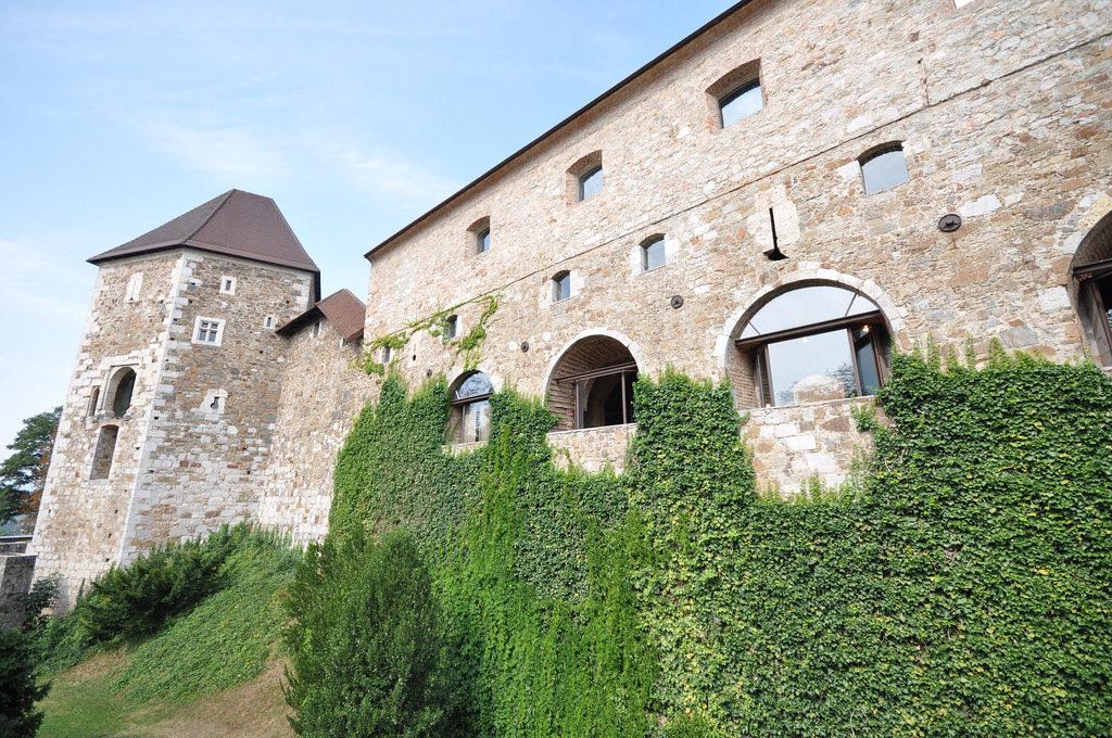 Lublana, Słowenia, zamek, wózek elektryczny, turystyka bez barier, wózek inwalidzki